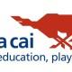 Da Ma Cai Logo